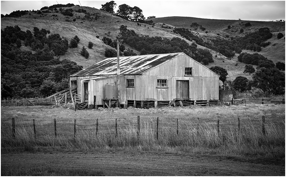 rusty farm shed sitting in a grassy field landscape with hills in background
