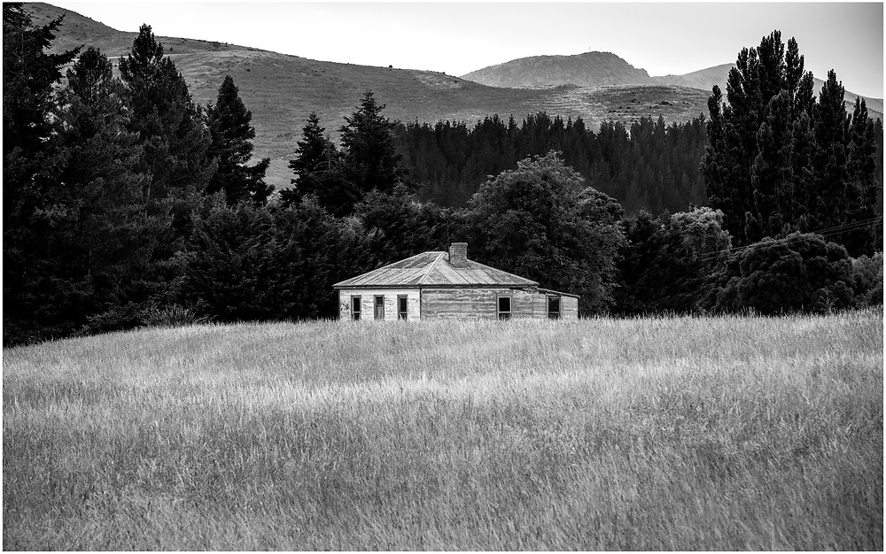 abandoned rustic farmhouse sits in a field of long grass
