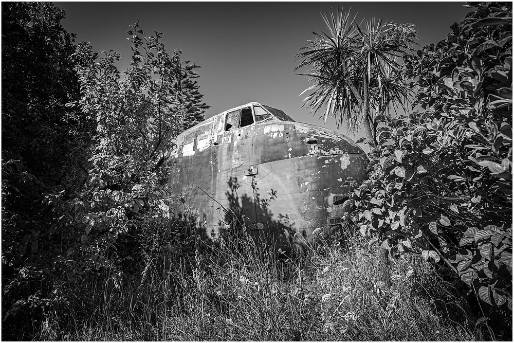 abandoned and wrecked military cargo plane buried in the trees of a remote forest