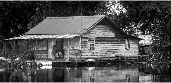 Swamp home, Central Cambodia