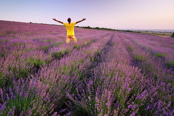man-in-meadow-of-lavender-C4HYVCA.jpg