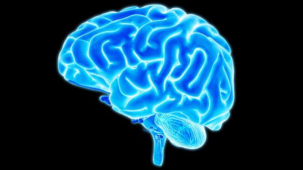 科學實證|靜觀提升腦功能的六種方法