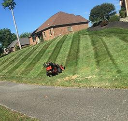Lawn Care Cincinnati