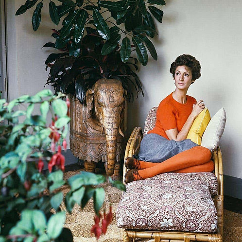 Marella Agnelli, 1967 (Small size)