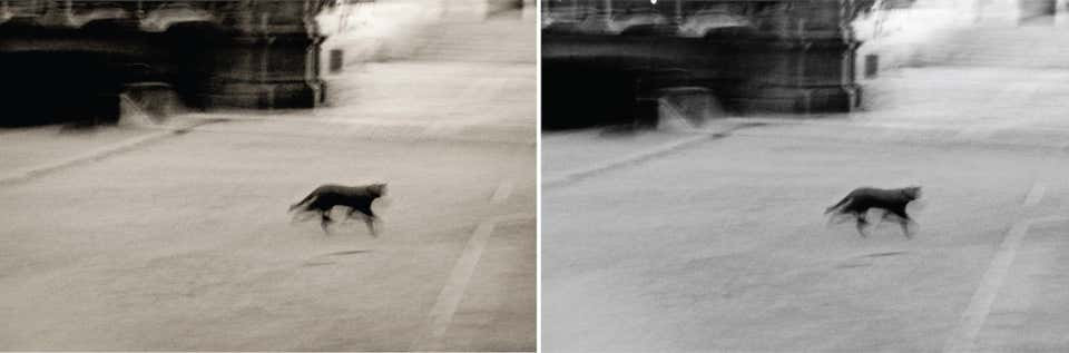 Lucky Shadows Diptych, 1999 (Sepia - B&W)