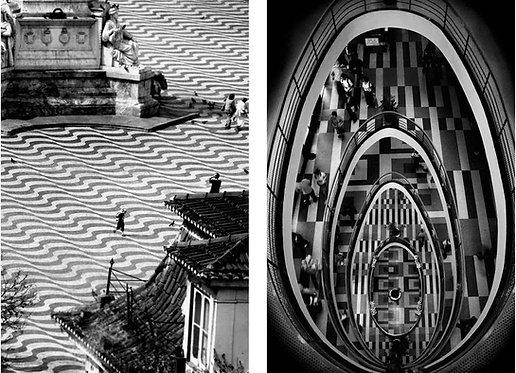 Diptych: As Paloma and Egg, Black and white archival pigment print, Small 2011_Guilherme Licurgo
