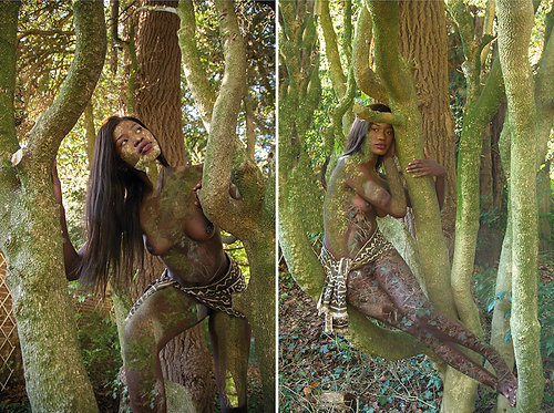 Women and Trees II and III, Diptych