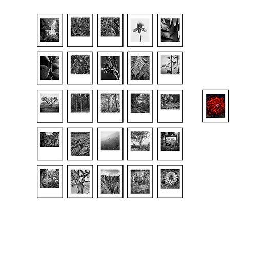 Matas Portfolio, Limited Edition 25 Silver Gelatin Prints encased in box 2017