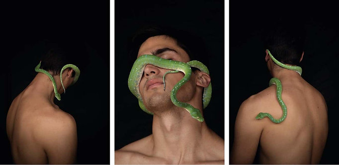 Man & Serpent Two, One, and Three,  2017 - 2018 Ricky Cohete