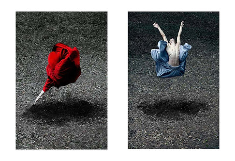 Desert Rose and Booming Flower I (Diptych), 2014