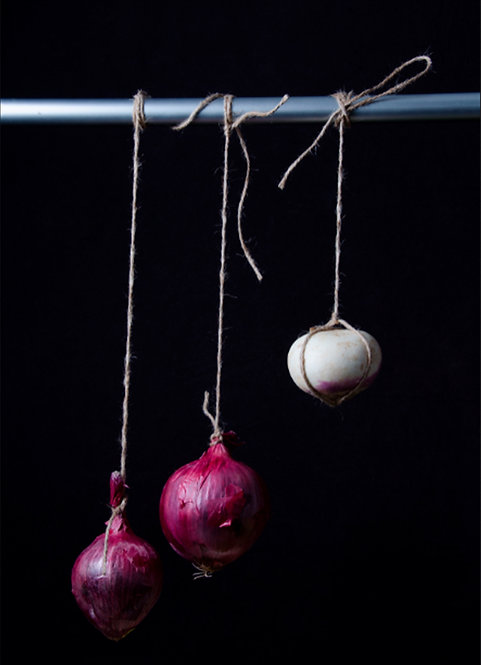Cebollas I. From the bodegones series