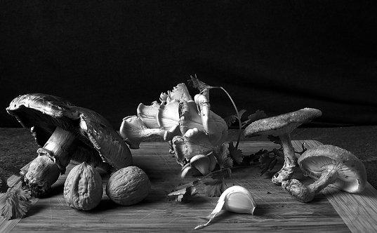 Champiñones. Black & White. From the bodegon series, 2015