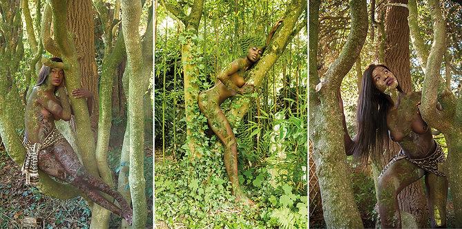 Women and Trees III, VIII and II, Triptych, 2020