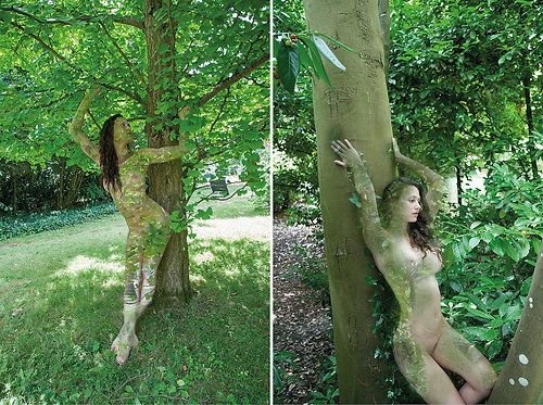 Women and Trees IV and VII, Diptych