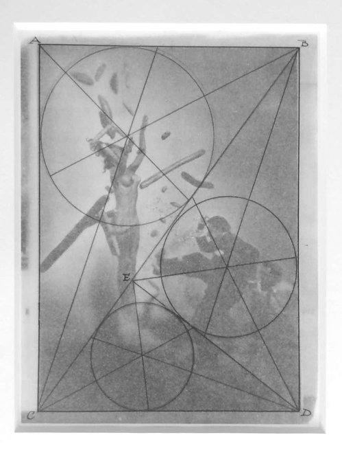 Untitled (Salvador Dali Homage), 1945-1948