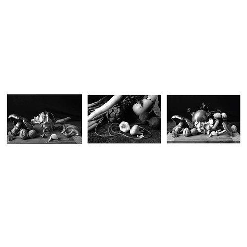 Champiñones, Bodegón con verduras II and Cebollas con champiñones. (B&W) Triptych. Dora Franco