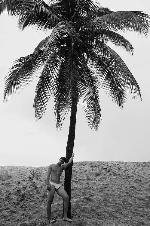 Men and Palm Tree, 2017 - 2018 (B&W)