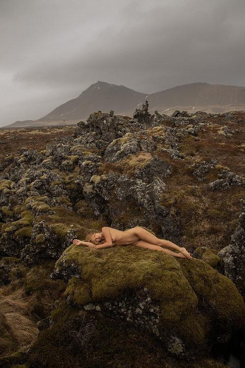 Marise Nature, 2019