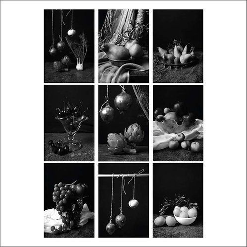 Set of 9, 2015 From the series Bodegones (B&W)