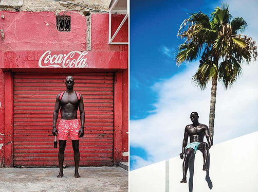 Coke and Why Not_From Iconic Series_Diptych_2016_Mikael Kenta
