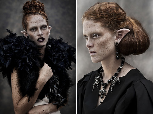 Lady of Naggaroth #1, and #2, Diptych, 2015