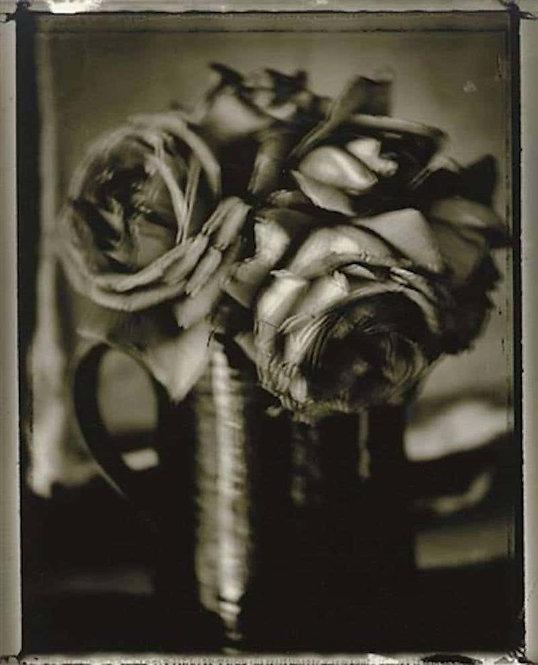 Roses, 1997