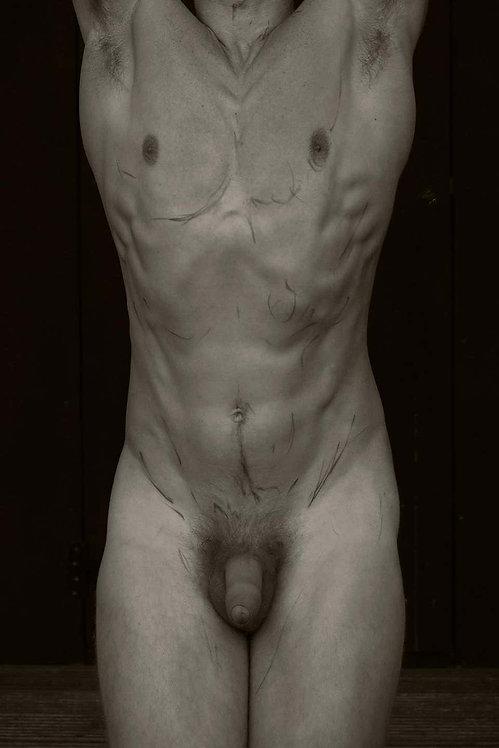 Body, 2017 - 2018 (Sepia)