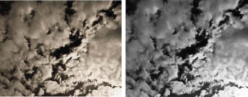 Liberty Diptych, 2002 (Sepia/B&W)