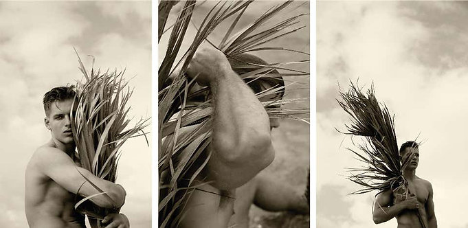 Palm embrace, Palm Three and Four. Set, 2017 - 2018 (Sepia)