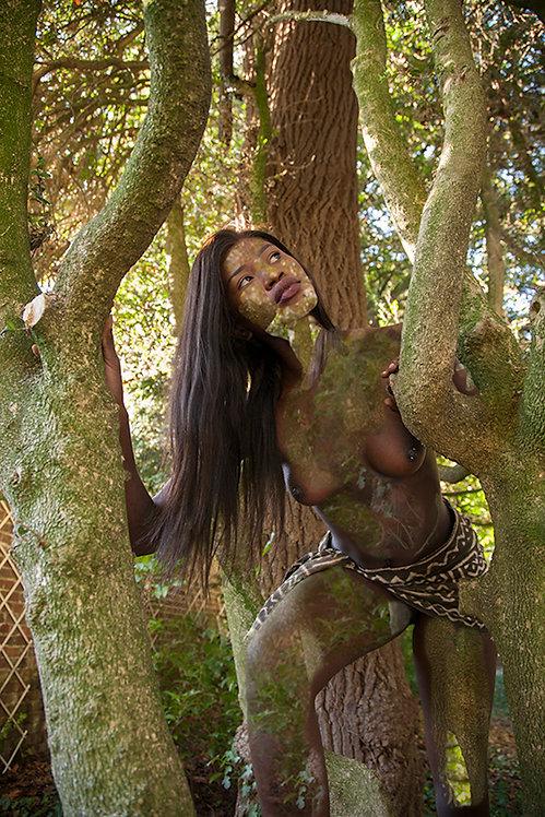 Women and Trees II, 2020