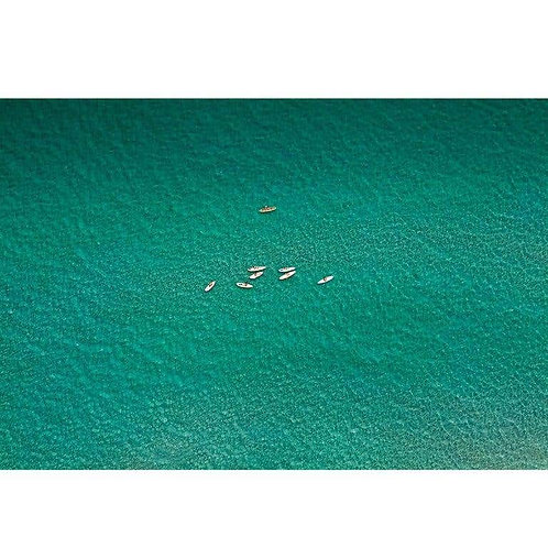 Paddle Boarders, 2015