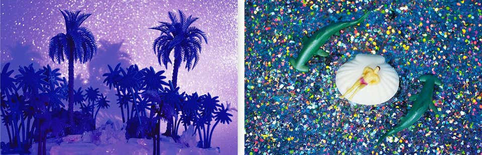 Diptych. Tropicarios #6 and #7, 2017