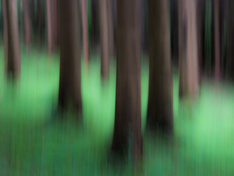 How to do Motion Blur Effect on trees