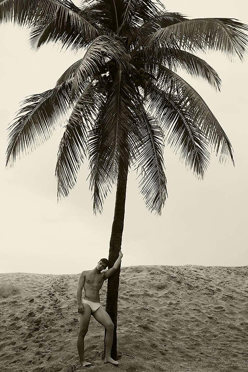 Men and Palm Tree, 2017 - 2018 (Sepia)