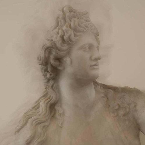Roman Statue Study 6_Abstract Figurative Color Photograph_2016_Luca Artioli