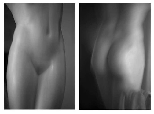 Roman Statue Study 7 and 8 Diptych, 2016