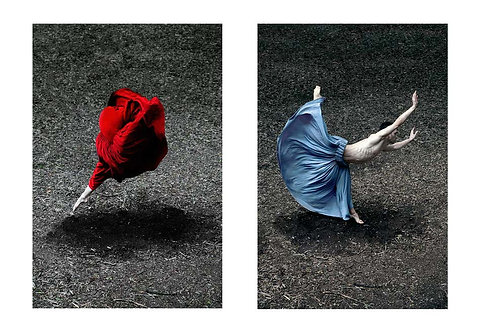 Desert Rose and Booming Flower II (Diptych), 2014