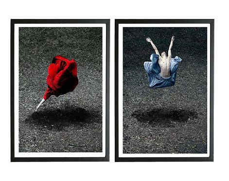 Desert Rose and Booming Flower I (Diptych - Framed), 2014