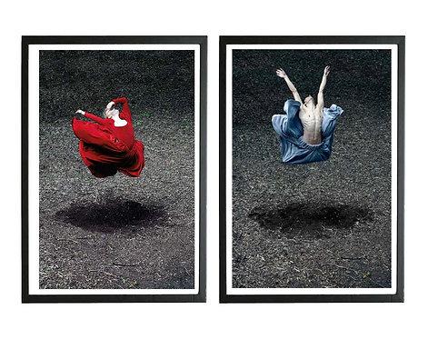Desert Rose I and Booming Flower I (Diptych - Framed), 2014