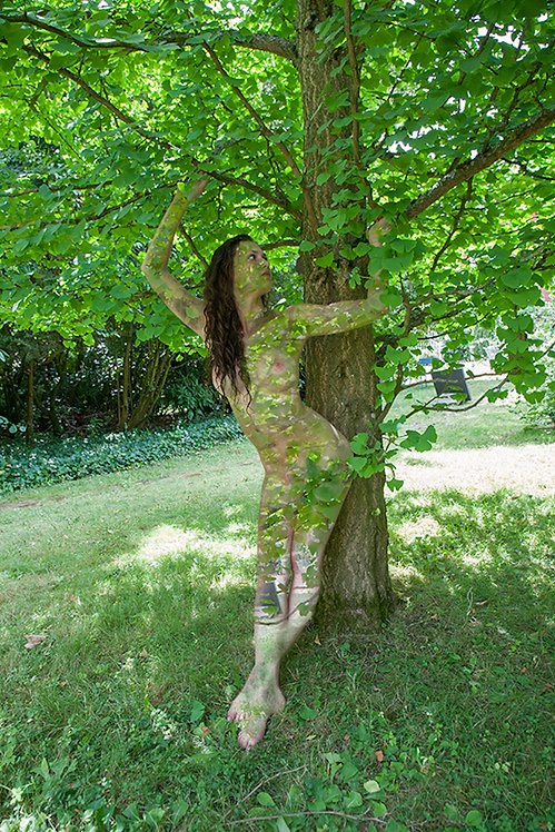 Women and Trees IV, 2020