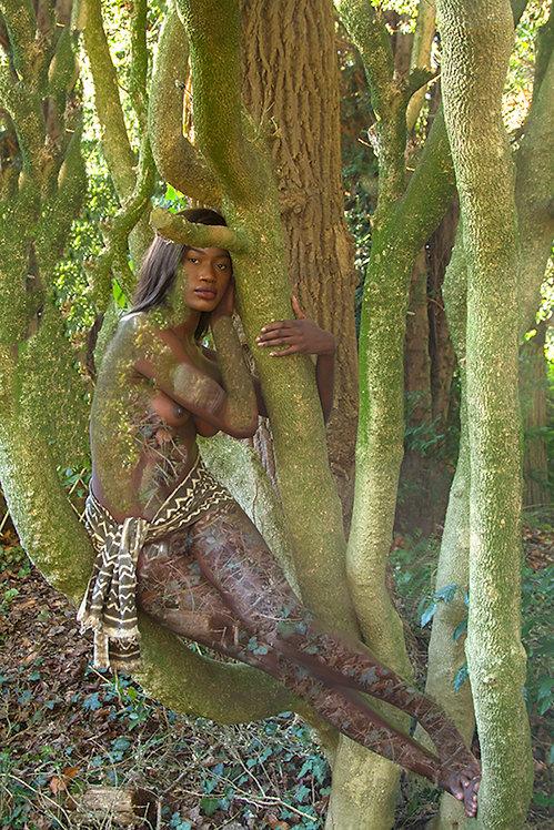 Women and Trees III, 2020