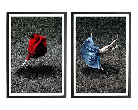 Desert Rose and Booming Flower II (Diptych - Framed), 2014