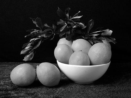 Lemons I. Black & White. From the bodegon series