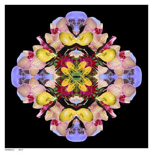 Mandala 3A, 2020_ Emma Anna Chatter