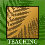 Roaming-Therapies-Logo-Teaching.png