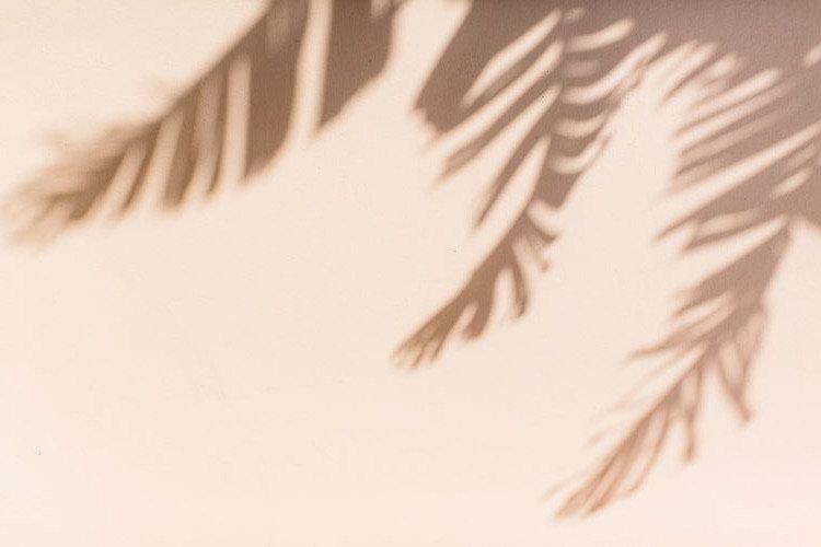 Palm%20Beach%20Travel%20Guide%20%E2%80%9