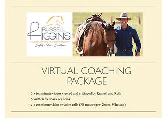 virtual coaching Package.jpg