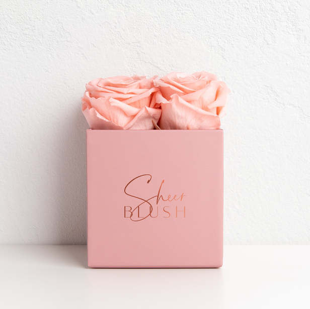 Sheer Blush | Real roses that last for years