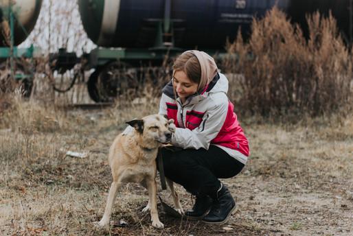 """Волонтёры в приюте для животных """"Вита"""""""