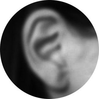 ear in circle.jpg